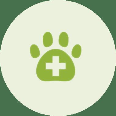 Haut - und Allergiediagnostik